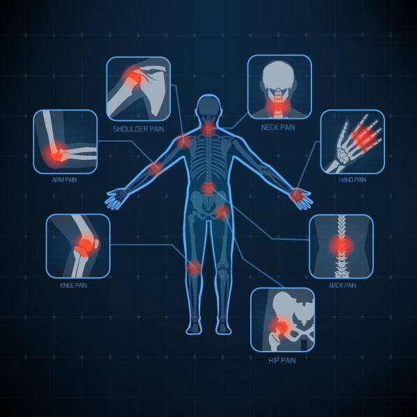 Diagram of a persons body indicating what parts and joints can be adjusted by chiropractic care